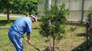 한돈자조금,·한돈협, '제7회 아름다운 한돈 농장 가꾸기 나무심기' 캠페인 실시
