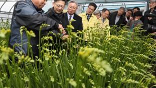 농식품부 김현수 장관, 화훼소비 감소에 따른 농가 점검 이어가